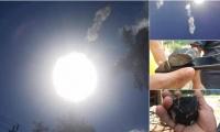 El hecho se dio en la provincia de Pinar del Río, en Cuba.