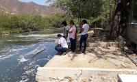La mortandad de peces se registra en el canal de Las Iguanas, en El Rodadero.
