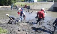 Los trabajos incluyeron el retiro de los sedimentos, maleza, troncos y raíces.