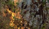 Incendio forestal en la vereda Tigrera.