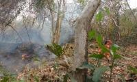 La brisa propagó rápidamente el fuego y las llamas acabaron con la vida de Johana Patricia.