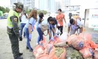 Los desechos fueron retirados del fondo marino y de la playa.