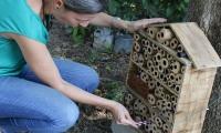 Los llamados hoteles de abejas fueron instalados en cinco puntos de la Universidad, con el propósito de lograr estudiar e identificar las especies que se encuentran en el Campus y sus alrededores.
