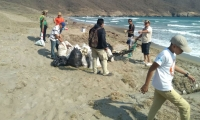 Limpieza del sector de Siete Olas en el Parque Tayrona.