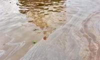 Mancha a orillas del Río Magdalena