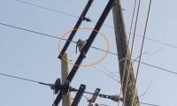 Electricaribe divulgó esta foto en la que se ve una cadena de motocicleta en la red eléctrica.