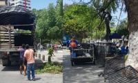 Las vallas fueron instaladas el pasado 21 de junio para controlar la informalidad.