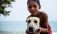 Esta fue una de las fotos finalistas del concurso Orgullo Samario.