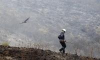 Incendio forestal en Tolima.