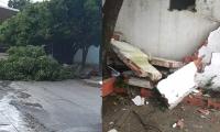 Árboles caídos y daños en la Casa de Cultura.