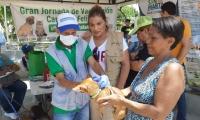 Jornada de vacunación de animales
