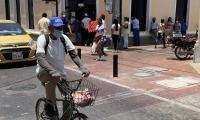 Samarios en las calles del Centro Histórico.