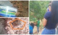 En la imagen inferior-izquierda se ve un gusano gigante dentro de la lata de atún. También había muchos gusanos pequeños.