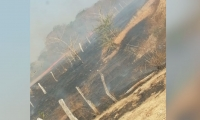 se registró un incendio en la finca La 80, ubicada en el municipio de Nueva Granada.
