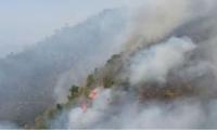Incendios en Tigrera.