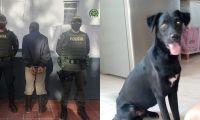 Luis Antonio Cáceres, habría agredido gravemente a su perro de nombre Negrete, hasta ocasionarle la muerte.