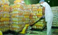 Acopio y posterior entrega de kits alimenticios.