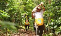 De la mano con la justicia han recuperado cerca de 60.000 hectáreas.