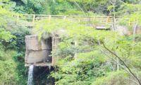 Carepa, Antioquia - referencia.