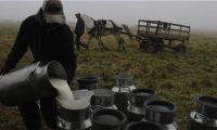 Japón aprobó los requisitos para la exportación de leche y derivados lácteos colombianos.