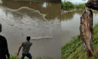Personas pescando en el Parque del Agua