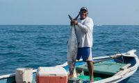festival de la pesca