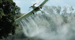La aspersión aérea con glifosato había sido suspendida por orden del Consejo Nacional de Estupefacientes.