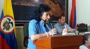 Luz Elvira Angarita, directora territorial de Parques.