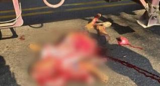 Persona que murió en el accidente.