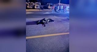 El cuerpo de Yesenia Francisca Rivero Muñoz quedó tendido sobre la vía.