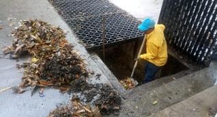 Labores de limpieza adelantadas por Essmar.