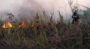 En  Magdalena se han presentado 36 incendios forestales en 2020, 18 de estos en la Sierra Nevada.