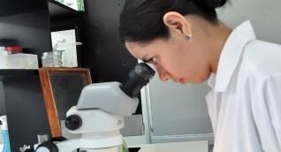 La Alma Mater postuló siete proyectos de investigación para combatir las problemáticas generadas por la pandemia.