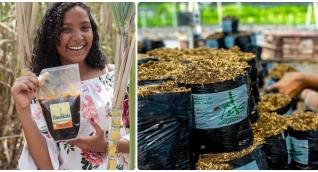 Corpamag apoya varias líneas de negocios verdes en el Magdalena.