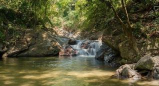 Minca se ha dado a conocer como la capital ecológica de la Sierra Nevada.
