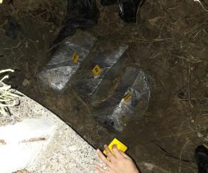 Cocaína hallada en Isla Pelícano
