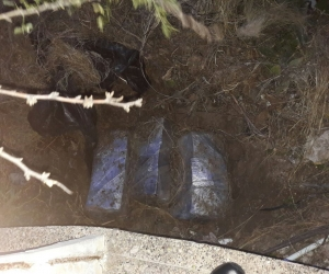 Droga enterrada en Isla Pelícano