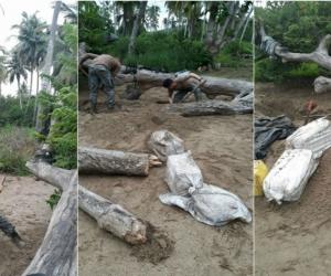 La droga estaba enterrada en 14 bultos, que fueron sacados por hombres de la Armada Nacional.