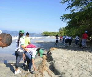 Fueron más de tres toneladas las que se recogieron en la playa del aeropuerto.