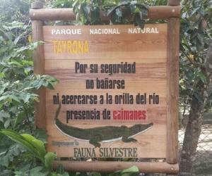 Estos son algunos de los letreros que previenen sobre la presencia de caimanes.