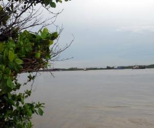 Vista del Río Magdalena.