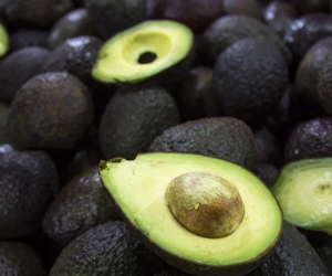 Aguacate Hass Colombiano