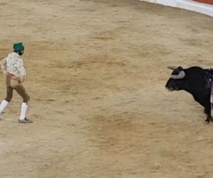 Torero de 26 años atacado por toro