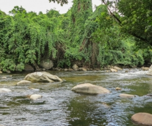 Ideam advierte que se pueden presentar incrementos súbitos en los ríos Fundación, Guachaca, Piedras, Palomino, Minca, Manzanares, Ranchería, Dibulla, Ancho, Don Diego, Buritaca, Sevilla, entre otros.