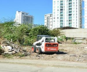 Hasta la fecha, 28 de 100 propietarios de lotes han sido procesados para que le den cumplimiento a la limpieza y cerramiento de sus propiedades.