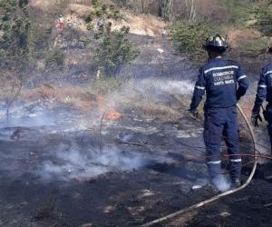 Bomberos atendieron emergencia en cercanías a la bomba Zuca.