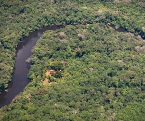 Amazonía colombiana se enfrenta a numerosos factores externos que amenazan su conservación.