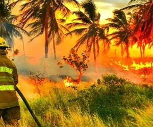 Más de cuatro horas demoró el incendio.