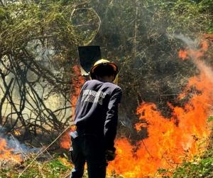 Fuertes vientos han hecho difícil sofocar las llamas.