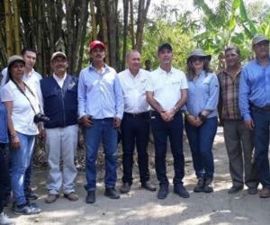 Visita del Ica y Cenipalma a fincas con plantaciones de palma de aceite.